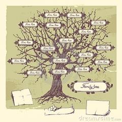 arbre-généalogique-22080265.jpg